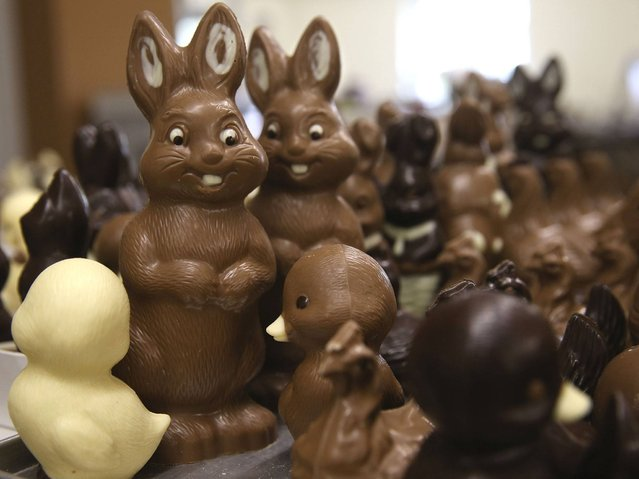 Chocolate Easter bunnies and other animals lie on a table prior to being packaged at the production facility at Confiserie Felicitas chocolates maker in Hornow. (Photo by Sean Gallup/Getty Images)