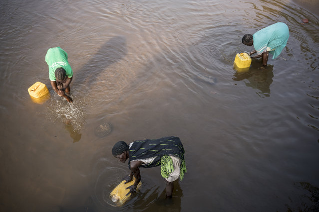 In this photo taken Thursday, March 9, 2017, women fill jerrycans of river water to take back to their homes in Torit, in South Sudan. (Photo by Mackenzie Knowles-Coursin/UNICEF via AP Photo)
