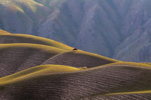 Photo taken on August 13, 2019 shows a scenery on the Kalajun grassland in Tekes County, northwest China's Xinjiang Uygur Autonomous Region. (Photo by Hu Huhu/Xinhua News Agency/Barcroft Media)