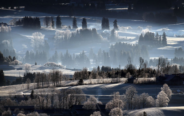 The light of the still low sun shines on the hills of the hoar-frost-covered Alpine foothills in Bernbeuren, Germany on December 30, 2019. (Photo by Karl-Josef Hildenbrand/dpa)