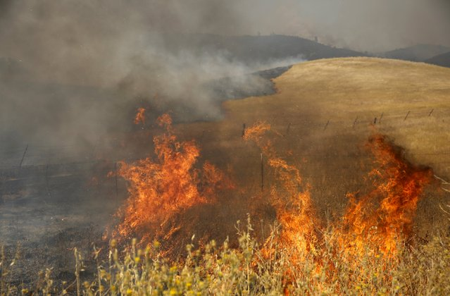 Fire consumes a ridge bordering Morgan Valley Road at the so-called Jerusalem Fire in Lake County, California, August 12, 2015. (Photo by Robert Galbraith/Reuters)