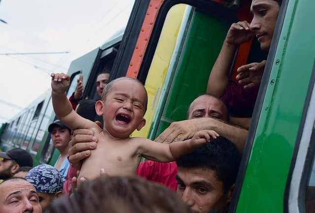 A migrant holds a crying boy out of a local train coming from Budapest and heading to the Austrian border, that has been stopped in Bicske, west of the Hungarian capital on September 3, 2015. The train carrying between 200 and 300 migrants left Budapest's main international train station after authorities re-opened the station to migrants as the EU is grappling with an unprecedented influx of people fleeing war, repression and poverty in what the bloc has described as its worst refugee crisis in 50 years. (Photo by Attila Kisbenedek/AFP Photo)