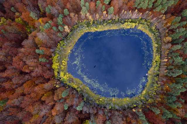 A view over a lake in a forest with trees changing colour in Autumn in Kashubia, Poland. (Photo by Kacper Kowalski/Panos Pictures)