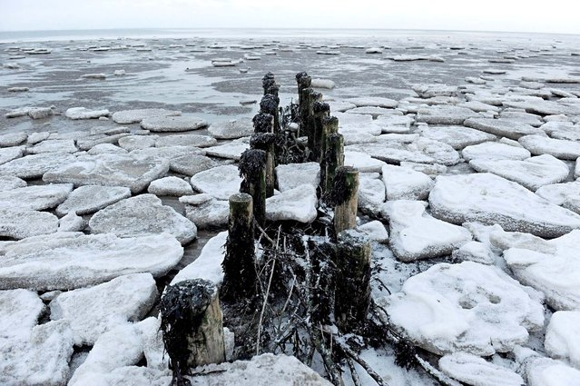 Ice floes float on the Wadden Sea in Neuharlingersiel, Germany, on December 28, 2010. (Photo by Ingo Wagner/AFP Photo)