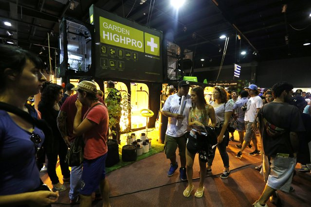 "People walk along the first ""Expo Cannabis"" fair in Montevideo December 14, 2014. (Photo by Andres Stapff/Reuters)"