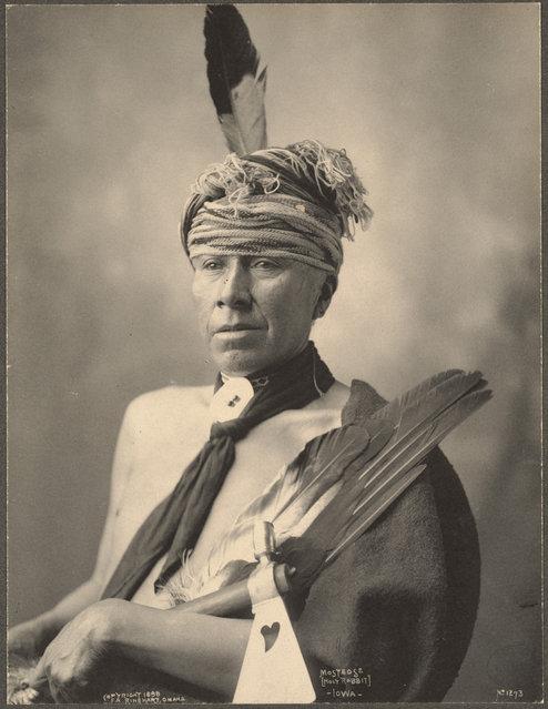 Mosteose (Holy Rabbit), Iowa, 1899. (Photo by Frank A. Rinehart)