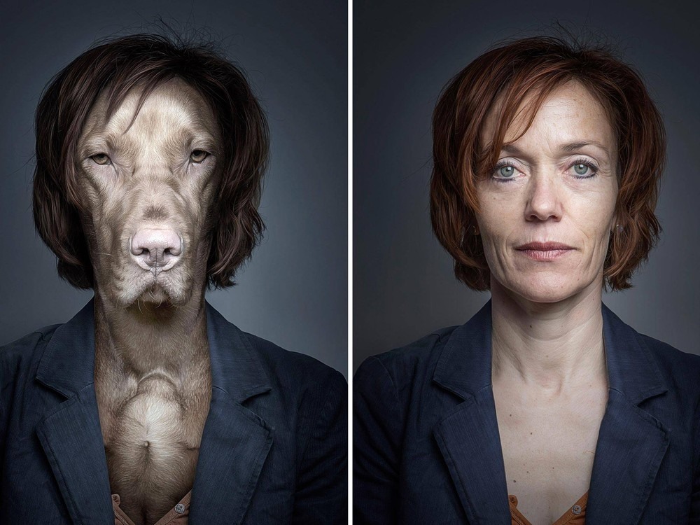 "The ""Underdogs"" Project by Sebastian Magnani"