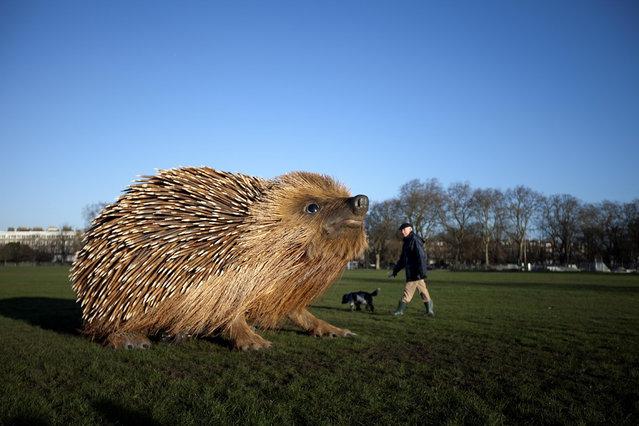 Giant Hedgehog In London