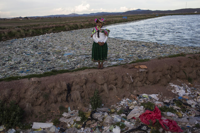 "In this February 1, 2017 photo, environmental activist Maruja Inquilla poses for a photo next to a Municipal waste treatment plant with water that flows into Lake Titicaca, in Juliaca, in the Puno region of Peru. ""If the frogs could talk they would say, This is killing me"","" said Inquilla, who recently showed up at the Puno governor's house carrying plastic bags filled with hundreds of dead frogs in protest. (Photo by Rodrigo Abd/AP Photo)"