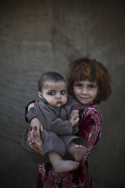 In this Monday, January 27, 2014 photo, Afghan refugee girl, Khalzarin Zirgul, 6, holds her cousin, Zaman, 3 months, as they pose for a picture, while playing with other children in a slum on the outskirts of Islamabad, Pakistan. (Photo by Muhammed Muheisen/AP Photo)