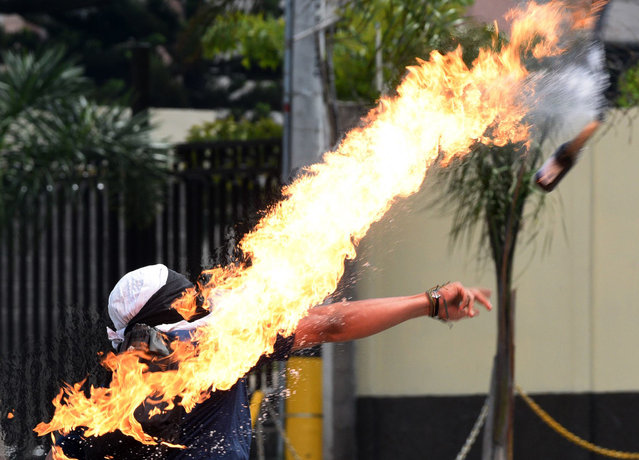 A student of the Autonomous National University of Honduras (UNAH) throws a Molotov cocktail at riot police during a protest demanding the resignation of Honduran President Juan Orlando Hernandez, in Tegucigalpa, on January 28, 2019 on the second day of protests. People took to the streets to protest against the president a year after his controversial inauguration. Hernandez took office on January 27, 2018 after being re-elected in a vote called fraud by the opposition alliance. (Photo by Orlando Sierra/AFP Photo)