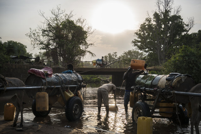 In this photo taken Thursday, March 9, 2017, young men fill water tanks from a river to take back and sell in neighborhoods around Torit, in South Sudan. (Photo by Mackenzie Knowles-Coursin/UNICEF via AP Photo)