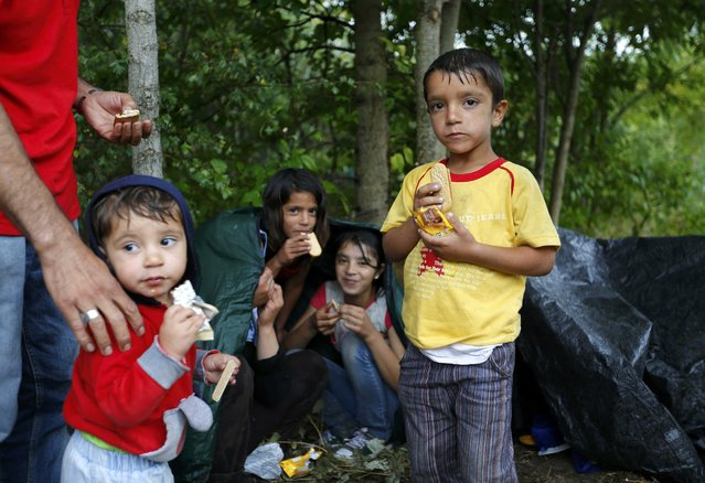 Children of migrants from Syria eat after crossing the border illegally from Serbia, near Asotthalom, Hungary July 27, 2015. (Photo by Laszlo Balogh/Reuters)