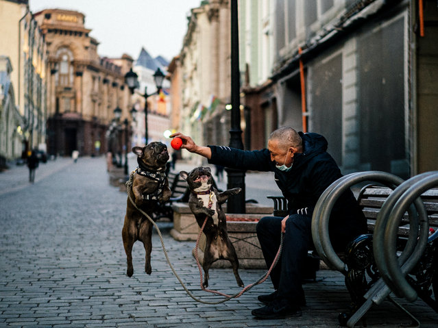 """A man plays with his dogs on a street in central Moscow on April 13, 2020 during a strict lockdown in Russia to stop the spread of the COVID-19, caused by the novel coronavirus. President Vladimir Putin on April 13, 2020, warned officials to brace for """"extraordinary"""" scenarios in the coronavirus pandemic as Moscow tightened its lockdown measures and Russia reported its highest daily infection figures yet. (Photo by Dimitar Dilkoff/AFP Photo)"""