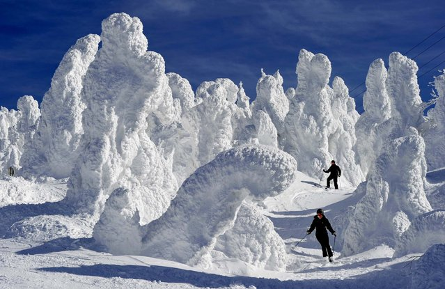 Skiers are dwarfed by ice-coated trees at the Zao Onsen ski resort at Zao, a mecca of winter sports in northern Japan, February 2, 2012. (Photo by Associated Press)