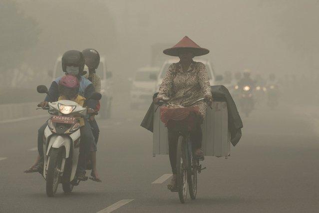 A cyclist wearing a mask rides a motorcycle as haze shrouds Cilik riwut street in Palangkaraya, October 4, 2015 in this photo taken by Antara Foto. (Photo by Rosa Panggabean/Reuters/Antara Foto)