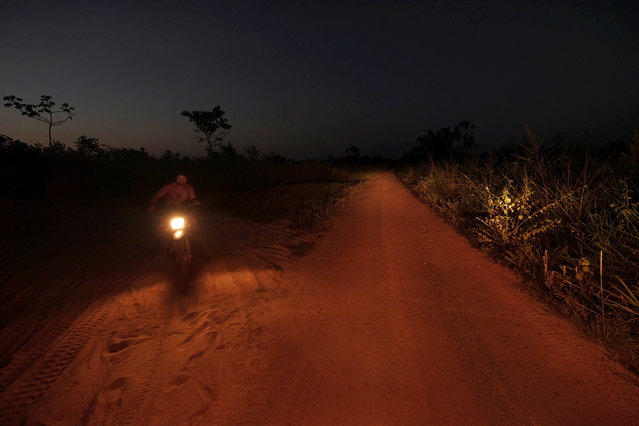 A motorcyclist travels along the road where Eusébio Ka'Apor, 42, was shot and killed near Alto Turiacu Reserve, Maranhão, Brazil on August 12, 2015. Ka'Apor, a community leader in Alto Turiaçu, was killed in April after being ambushed while riding on the back of a motorcycle. Loggers have been stealing hardwood trees from indigenous lands in Brazil. (Photo by Bonnie Jo Mount/The Washington Post)