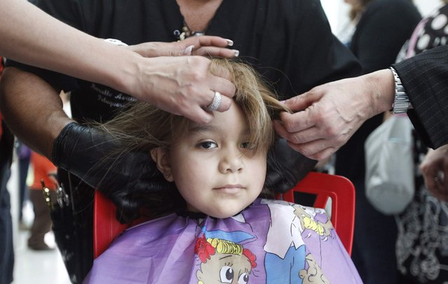 Hair stylist Marcelo Avatte and his team fit a natural hair wig on Alexandra Munoz, 5, who lost her hair due to chemotherapy for a brain tumor, in the cancer ward of the Luis Calvo Mackenna Hospital in Santiago, October 23, 2014. (Photo by Rodrigo Garrido/Reuters)