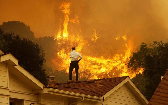 A man watches the approaching flames as the Springs fire continues to grow near Camarillo, California, on May 3, 2013. The wildfire has spread to more than 18,000 acres on day two and is 20 percent contained. (Photo by David McNew/Getty Images)