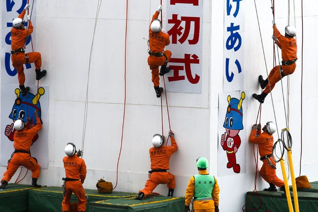 Rescue workers mount a wall using ropes during a New Year presentation by the fire brigade in Tokyo January 6, 2015. (Photo by Thomas Peter/Reuters)