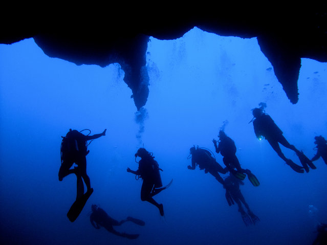 """The Big Blue"". Having done, over 200 dives, this one will always be a special one. The Great Blue Hole off the coast of Belize is an eerie descent down an ancient sink hole. The shaft is narrow, straight down and quickly eats up the sun. The darkness is disorienting. You keep pushing your limits as the temperature plummets and your heart races faster and faster. You are surrounded by a tangible silence that amplifies your fear that the unknown will suddenly lash out at you through the veil of darkness. You are now deeper than you have even been, so you are using up your oxygen faster than ever. (Photo and caption by Jitsen Chang/National Geographic Traveler Photo Contest)"