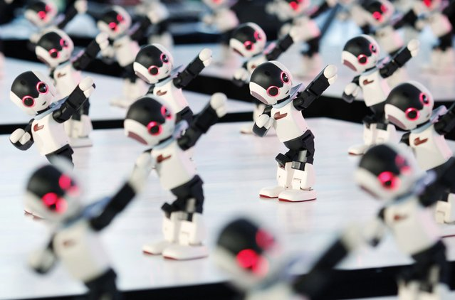 """A hundred humanoid communication robots called """"Robi"""" perform a synchronized dance during a promotional event called 100 Robi, for the Weekly Robi Magazine, in Tokyo January 20, 2015. The 34cm-tall (13.4-inch) robot, designed by Tomotaka Takahashi, chief executive officer of Robo Garage Co and project associate professor of Research Centre for Advanced Science and Technology at the University of Tokyo, is able to speak, walk and dance. (Photo by Yuya Shino/Reuters)"""