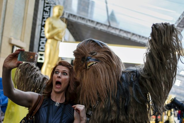 A woman reacts as she poses with a man dressed up as the Star Wars character Chewbacca outside the Dolby Theatre, the site of the 88th Academy Awards in Hollywood, California February 26, 2016. (Photo by Adrees Latif/Reuters)
