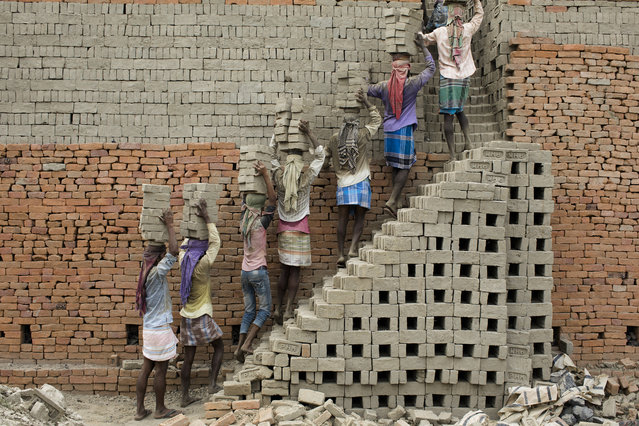 Indian labourers carry clay bricks to a brick kiln in Farakka, in the Indian state of West Bengal, on April 3, 2019. (Photo by Xavier Galiana/AFP Photo)