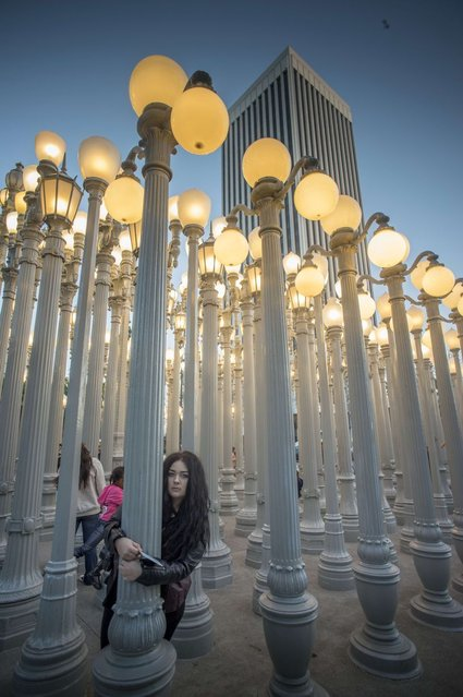 A young woman poses for a picture under the columns of Urban Lights in front of the Los Angeles County Museum of Art in Los Angeles, California on February 16, 2014. Urban Light, favorite place for portraits of wedding photographers, is a 2008 large-scale assemblage sculpture by Chris Burden. (Photo by Joe Klamar/AFP Photo)