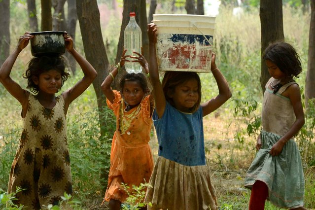 Children of Indian labourers use various containers to carry water from a distribution point in Amritsar on May 12, 2015. (Photo by Narinder Nanu/AFP Photo)