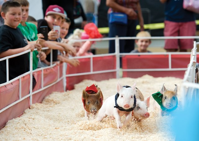 In this photo taken on Wednesday, May 13, 2015, children cheer for racers at the Barnyard racing pit at the Porterville Fairgrounds, in Porterville, Calif. The fair started Wednesday and will run through Sunday. (Photo by Chieko Hara/The Porterville Recorder via AP Photo)