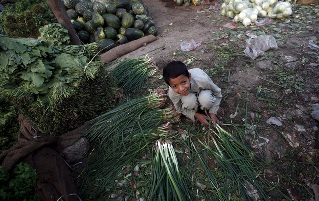 A boy sorts scallions at a wholesale fruit and vegetable market on the outskirts of Karachi April 22, 2015. (Photo by Athar Hussain/Reuters)