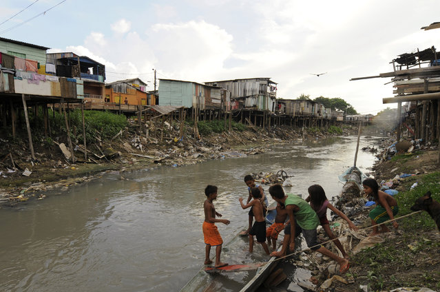 Children play in a canoe in a canal branching off the Negro River, Brazil, which flows through their slum but is drying up quickly in the middle of the Amazon basin's dry season, in Manaus October 14, 2009. After one of the worst flood seasons in recent history early this year, the excess of garbage that was left by the high waters is now affecting the region's residents. (Photo by Raphael Alves/Reuters/Amazonaspress)