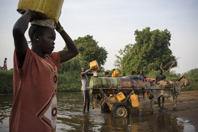 In this photo taken Thursday, March 9, 2017, a woman carries a jerrycan of river water back to her home, as young men fill water tanks from the river to take back and sell in neighborhoods around Torit, in South Sudan. (Photo by Mackenzie Knowles-Coursin/UNICEF via AP Photo)
