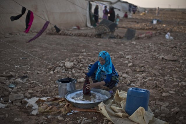 A Syrian refugee woman washes her laundry outside her tent at an informal tented settlement near the Syrian border on the outskirts of Mafraq, Jordan, Thursday, July 23, 2015. (Photo by Muhammed Muheisen/AP Photo)