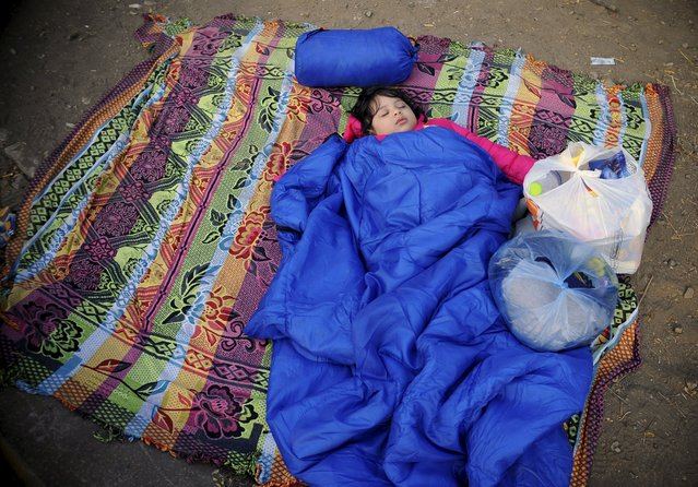 A girl, part of a new group of more than a thousand immigrants, sleeps as they wait at the border line of Macedonia and Greece to enter into Macedonia near Gevgelija railway station  August 20, 2015. (Photo by Ognen Teofilovski/Reuters)
