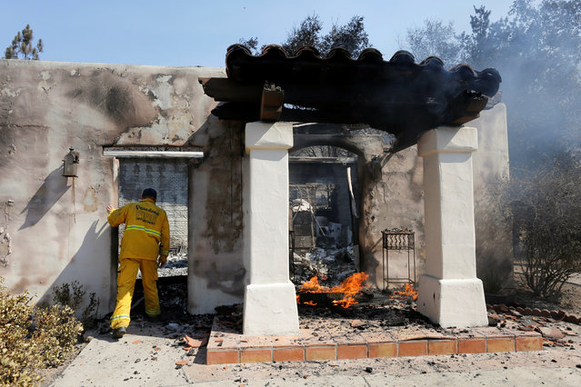 A firefighter checks a home that was burned in the so-called Sand Fire in the Angeles National Forest near Los Angeles, California, U.S. July 24, 2016. (Photo by Jonathan Alcorn/Reuters)