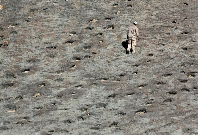 A man walks next to dinosaur footprints at the Maragua Syncline, Bolivia, July 21, 2016. (Photo by David Mercado/Reuters)