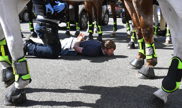 Police detain an anti-lockdown protester at Melbourne's Queen Victoria Market during a rally on September 13, 2020, amid the ongoing COVID-19 coronavirus pandemic. Melbourne continues to enforce strict lockdown measures to battle a second wave of the coronavirus. (Photo by William West/AFP Photo)