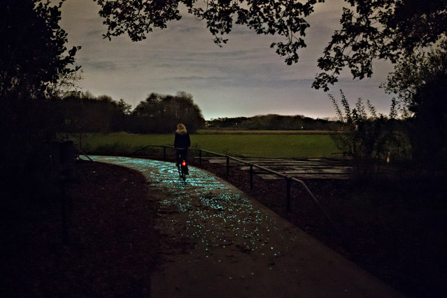 """The path is part of Smart Highway, a collaborative project between Roosegaarade and the Dutch construction company Heijmans, for """"interactive and sustainable roads for tomorrow"""". (Photo by Pim Hendriksen/Studio Roosegaarde)"""