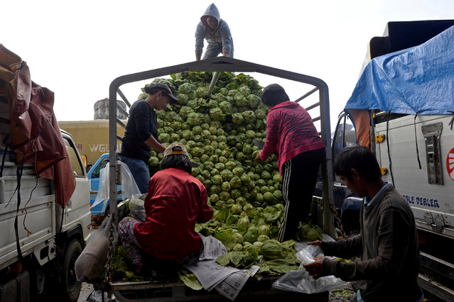 Workers unload cabbage from a truck at a vegetable market a day after Typhoon Haima hit La Trinidad, Benguet province, Philippines October 21, 2016. (Photo by Ezra Acayan/Reuters)