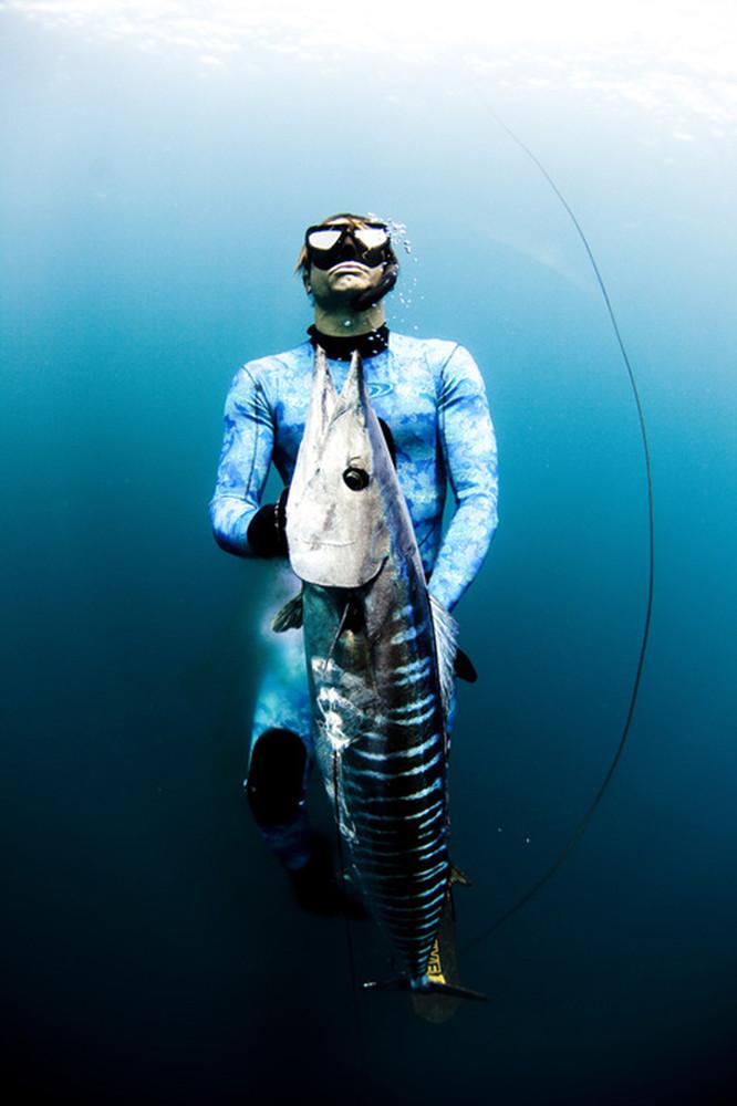 Free Dive Hunters