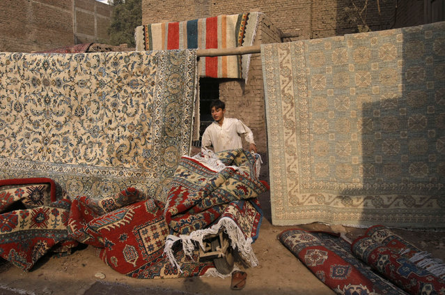 A boy transport dry carpets on a push-cart after washing them at a workshop in Peshawar, Pakistan Friday, November 11, 2016. (Photo by Mohammad Sajjad/AP Photo)