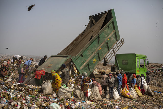 Trash pickers surround a municipal garbage truck dumping trash at the Bhalswa landfill on the outskirts of New Delhi, India, Wednesday, March 10, 2021. The pandemic has amplified the risks that these informal workers face. Few have their own protective gear or even clean water to wash their hands, said Chitra Mukherjee of Chintan, a nonprofit environmental research group in New Delhi. (Photo by Altaf Qadri/AP Photo)