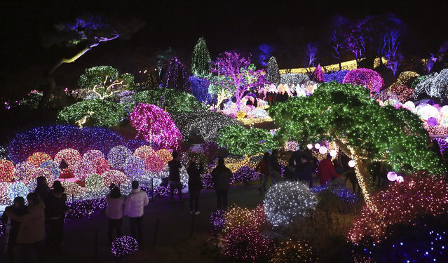 Visitors are silhouetted against illuminated lights decorating trees to celebrate the upcoming Christmas and New Year holiday season at the Garden of Morning Calm in Gapyeong, South Korea, Sunday, December 18, 2016. The garden, the oldest private garden in the country, houses about 5,000 kinds of plants. (Photo by Ahn Young-joon/AP Photo)