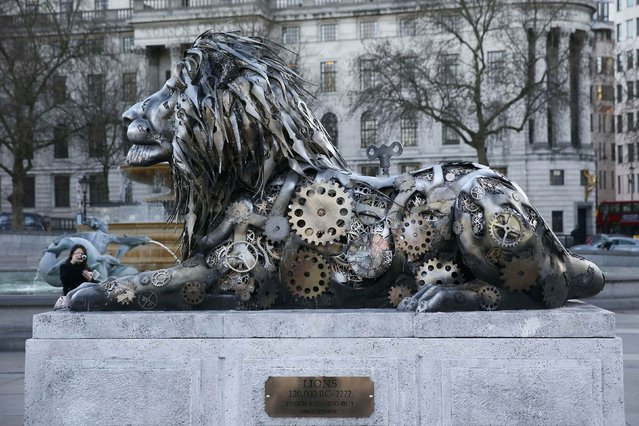 A pedestrian photographs a lion sculpture installed by National Geographic Wild to highlight the threat to endangered big cats, in Trafalgar Square in London, Britain January 28, 2016. (Photo by Stefan Wermuth/Reuters)