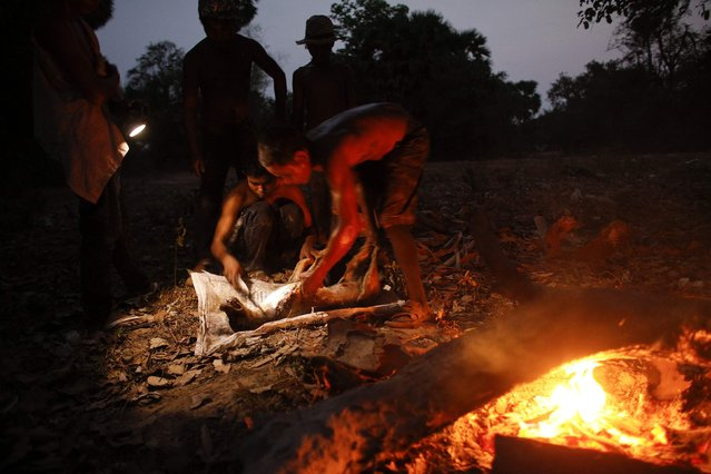 Boys who work and live at a landfill dumpsite outside Siem Reap prepare to burn a dog March 18, 2015. A group of youngsters killed what they claim was a mad dog infected with rabies, removed its skin and hair on fire and said they would eat it later. (Photo by Athit Perawongmetha/Reuters)
