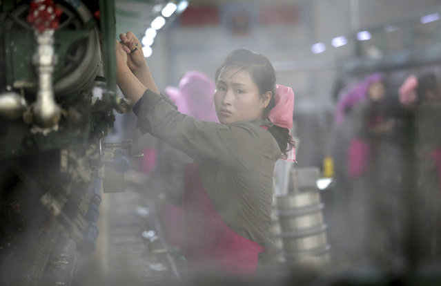 In this Friday, January 6, 2017, photo, a North Korean woman sorts silkworm cocoons to be boiled as part of the silk production process at the Kim Jong Suk Silk Mill in Pyongyang, North Korea. (Photo by Wong Maye-E/AP Photo)