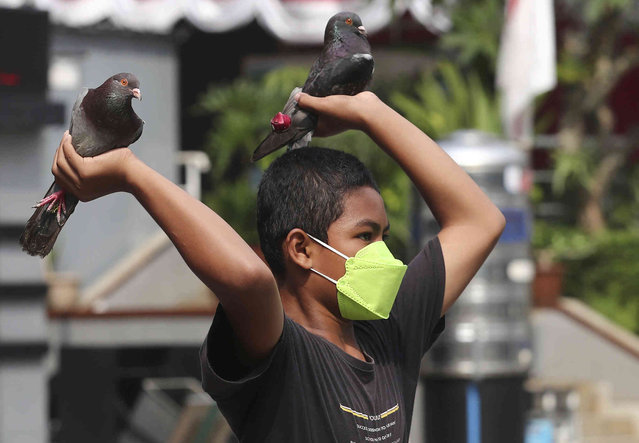 A young boy wearing a mask to help curb the spread of coronavirus plays with his pigeons in Jakarta, Indonesia, Tuesday, August 31, 2021. (Photo by Tatan Syuflana/AP Photo)
