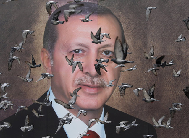 Pigeons fly in front of a large poster of Turkish President Tayyip Erdogan in Bursa, Turkey, April 6, 2019. Picture taken April 6, 2019. (Photo by Goran Tomasevic/Reuters)